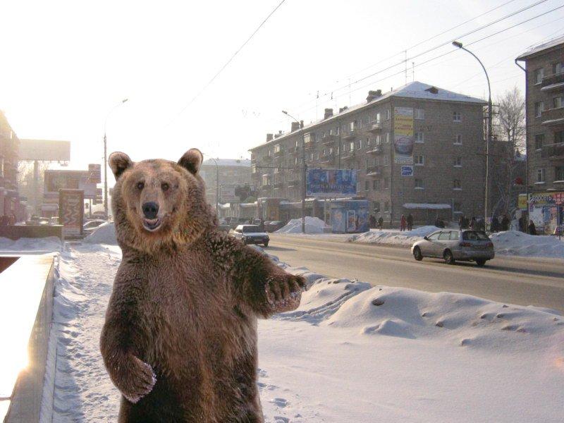 brodude.ru_7.02.2014_Efh9YUk1lVflF