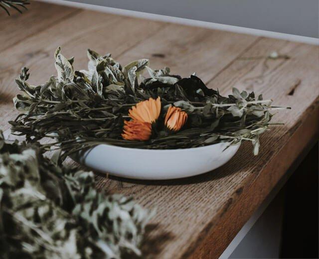 Самые полезные лекарственные растения — Полезные советы
